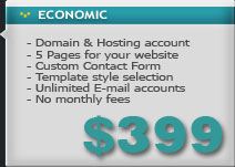 web design economic package