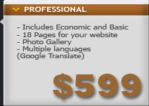 web design basic package